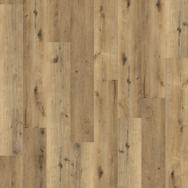 Essenzo dryback Dark Oak
