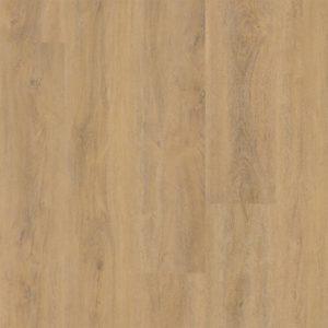 Robusto dryback Natural Oak