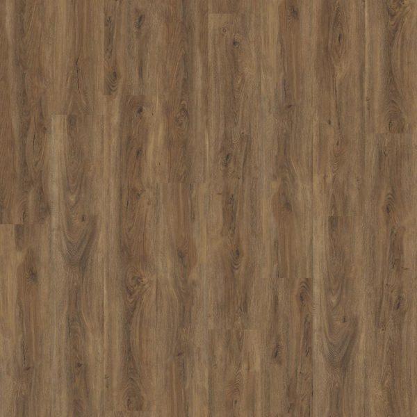 Robusto dryback Warm Brown